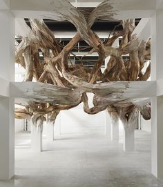 An installation about wood by Henrique Oliveira