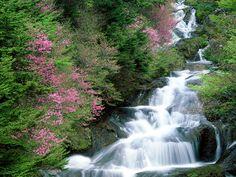 Imagens - Imagens paisagens naturais