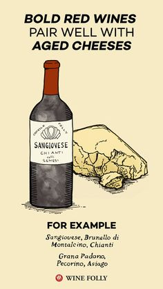 Bold red wines pair excellently with aged cheeses. Cheese Day, Aged Cheese, Wine Cheese, Carbs In Beer, Wine Folly, Just Wine, Wine Deals, Wine Fridge, Fine Wine