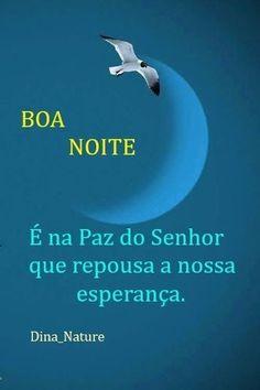 Kitana Mortal Kombat, Rio Grande Do Sul, Knowledge, Language, Dreams, Night, Imagenes De Amor, Good Nite Images, Romantic Good Night Sms