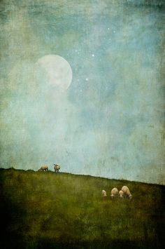 My Place Called Elsewhere. By Jamie Heiden