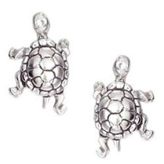 Sea Turtle Jewelry and Turtle Jewelry Sea Turtle Jewelry, Turtle Earrings, Stud Earrings, Mini Turtles, Cute Turtles, Beach Jewelry, Jewelry Gifts, Sea Turtle Gifts, Jewelry Collection