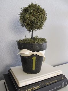 "Possible ""Garden Party"" Table numbers/centerpieces?"