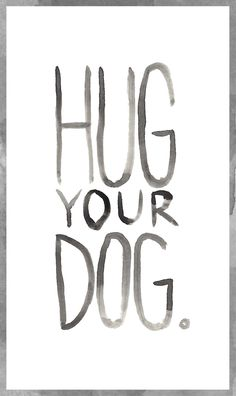 Love your dog, hug your dog! #inspiration #quotes