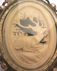 Large Victorian carved ox bone stag locket mourning brooch