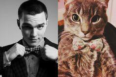 Nicholas Hoult contra un gato | 31 famosos sexies contra gatos