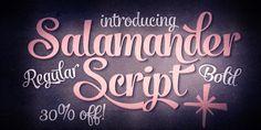 Salamander™ - Webfont & Desktop font « MyFonts