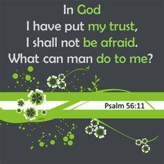 Psalm 56:11