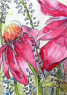 Native Prairie Flowers - ATC ACEO  - original watercolor and ink, purple coneflowers, blue salvia