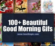 10 Really Beautiful Good Morning Gifs And Quotes Good Morning Happy Saturday, Cute Good Morning, Good Morning Picture, Good Morning Greetings, Morning Wish, Good Morning Images, Saturday Pictures, Morning Pictures, Night Pictures