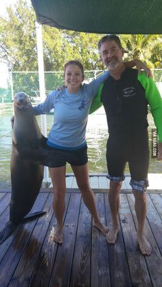 The look on that seal's face