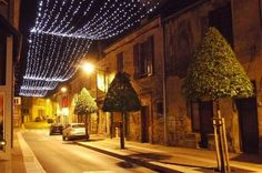 This is my idea of a perfect Xmas night in Southern France. what an understated, elegant decor..love the topiary  trees!