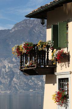 Morning sun. Lake Garda Italy