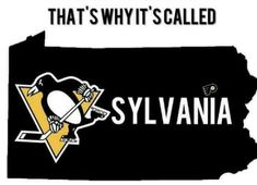 Amen to this! Love my Penguins. Pens Hockey, Hockey Memes, Hockey Stuff, Funny Hockey, Sports Memes, Pittsburgh Sports, Pittsburgh Penguins Hockey, Pittsburgh City, Pittsburgh Pirates
