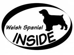 Hund Inside Auto AufkleberInside Aufkleber: Welsh Spaniel 1