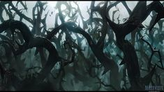The Forest of Thorns. Part of Baelathor's territory in the Feylands.
