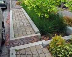 urban rain gardens - great examples