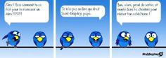 LE COFFRE AUX IMAGES - Page 12