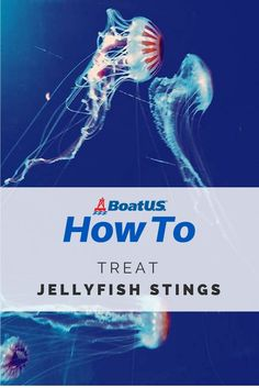 Most everything you've learned about treating jellyfish stings is probably wrong. Sometimes a sting is just an unpleasant surprise. Sometimes, it's more serious. Either way, here's what to do.