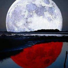 Será por eso que estoy con mi signo? RENACIENDO! #Repost @astrologiaalgomas with @repostapp  LUNA MENGUANTE EN ESCORPIO. Ambiente de intensidad emocional. Escorpio representa la muerte y la transformación y por ello las emociones son muy fuertes con este pase de Luna. El deseo se vuelve instintivo extremo y se pueden producir cambios radicales. Con esta Luna se puede cambiar o dejar cualquier hábito por ejemplo. La verdaderas transformaciones en la vida nos sacan de nuestra zona de…