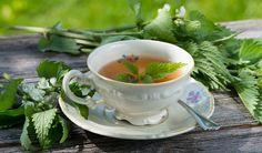 Podzimní očistné bylinné kúry - Vitalia.cz Spices And Herbs, Korn, Detox, Tea Cups, Healthy, Tableware, Fitness, Ideas, Medicine
