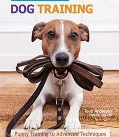 The Ultimate Guide To Dog Training: Puppy Training To Advanced Techniques Plus 50 Problem Behaviors Solved! PDF