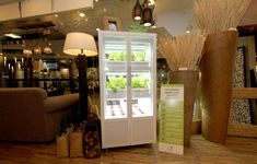 Indoor hydroponic systems. Growing greens in your living room. PHOTOS: RICHARD A. REYES