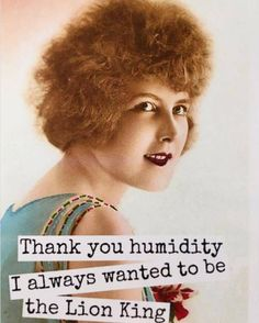 Thank you humidity. I always wanted to be the Lion King. That's hilarious! Salon Quotes, Hair Quotes, Retro Humor, Vintage Humor, Funny Vintage, Retro Funny, Vintage Comics, I Love To Laugh, Make You Smile