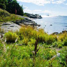 helsinki nature shoreline