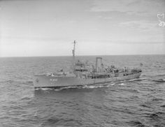 HMS Begonia (K66) she fought in several convoy battles. In July 1941 Begonia was part of the force escorting OG 69, which saw 7 ships sunk and one U-boat damaged off the coast of Portugal. In September 1941 Begonia was with HG 73, which lost 9 ships and an escort in a 10-day running battle. During her twelve months service in the Battle of the Atlantic Begonia escorted 15 Atlantic and 8 Gibraltar convoys, assisting in the safe passage of over 800 ships, though some were subsequently lost