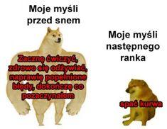 Very Funny Memes, True Memes, Wtf Funny, Funny Lyrics, Polish Memes, Everything And Nothing, Quality Memes, My Hero Academia, Haha