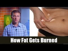 How Fat Gets Burned - YouTube