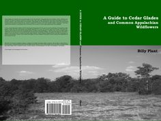 You can help fund a independently published (and well done) field guide.  You can donate to this project until March 26.  Thanks for your support!!  A GUIDE to CEDAR GLADES and Common Appalachian Wildflowers by Billy C. Plant III — Kickstarter