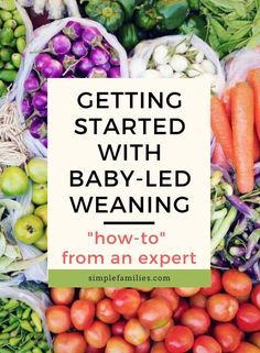 How to get started with baby-led weaning | baby led weaning | blw | babyled weaning | month by month with baby led weaning