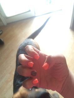 short acrylic nails coral with dark glitter accent nail