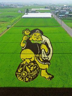 Les agriculteurs japonais ne manquent pas d'imagination ! Pour preuve, ces motifs géants réalisés grâce à différentes variétés de riz qui fleurissent dans tout le pays. Une sorte de concours informel auquel participent de plus en plus d'agriculteurs.