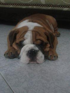 I love sleeping :)