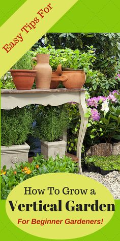 Vertical Vegetable Gardening Plans Tips And Ideas For Saving Space In Home Gardens Learn How To Design A Garden That Suits Your