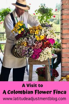 The flower farms of Santa Elena supply the beautiful flowers for Medellin's huge Feria de las Flores. Here's a great way to learn about this amazing tradition. Columbia Travel, San Gil, Flower Farmer, San Bernardo, South America Travel, Zinnias, Orange Flowers, Travel Inspiration, Beautiful Flowers