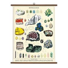 This features a chart of multiple beautiful minerals. Ready-to-hang art for your wall. Printed on heavy-weight Italian paper stock, double the size of Cavallini Wrap. Each chart is packaged in a heavy