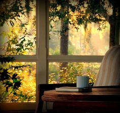Nature l Sunlight l Window view l Tea l Book l Amen. Looking Out The Window, Window View, Through The Window, Jolie Photo, Beautiful Morning, Beautiful Sunrise, Simple Pleasures, Windows And Doors, Feng Shui