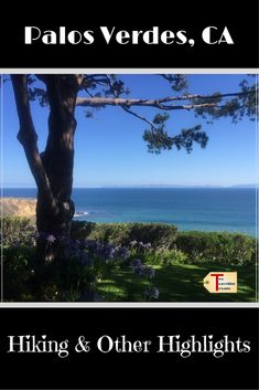 Wondering how to spend a day in Palos Verdes, California? We went hiking, saw the glass church, and visited a resort. California Tours, Waterfall Trail, Best Hikes, United States Travel, Beach Trip, Outdoor Travel, Cool Places To Visit, Travel Inspiration, Travel Ideas
