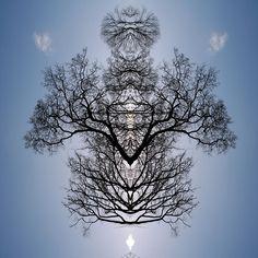 Tree Flip 2