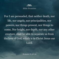 My absolute favorite Bible verse