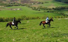 7 day horseback tour: Highland Trail, Scotland, plus Glenlivet distillery.