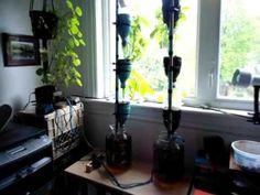 Windowfarm. Jardín hidropónico para las ventanas urbanas
