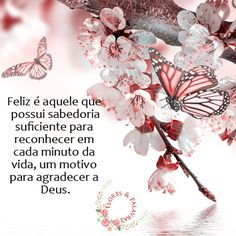 Feliz é aquele que possui sabedoria suficiente para reconhecer em cada minuto da vida, um motivo para agradecer a Deus.