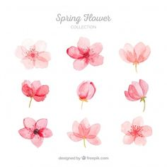 More than a million free vectors, PSD, photos and free icons. More than a million free vectors, PSD, photos and free icons. Exclusive freebies and all graphic resources that you need for your projects Watercolor Flowers Tutorial, Flower Tutorial, Simple Watercolor Flowers, Art Floral, Flower Graphic, Floral Retro, Floral Flowers, Watercolour Painting, Floral Watercolor