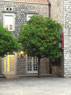 Dubrovnic Old Town, Croatia