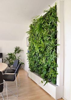 vertical garden in the meeting room creates a better mood garden # gre. vertical garden in the meeting room creates a better mood garden # gre. vertical garden in the meeting room creates a better mood garden # green Garden Wall Designs, Vertical Garden Design, Jardin Vertical Artificial, Vertikal Garden, Green Office, Design Jardin, Walled Garden, Plant Wall, Indoor Plants